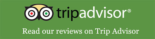 Read our trip advisor reviews